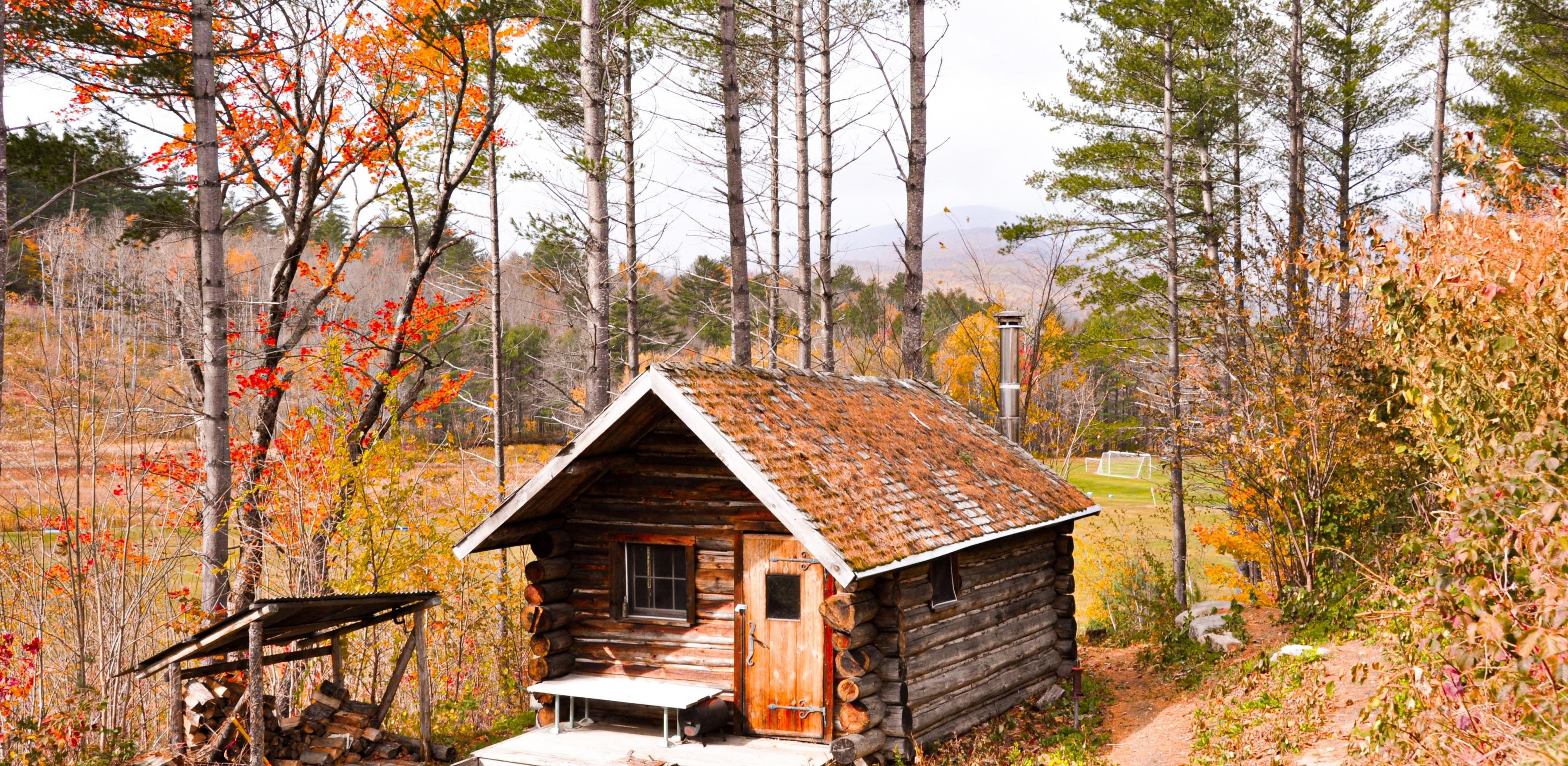 log cabin in forest during autumn